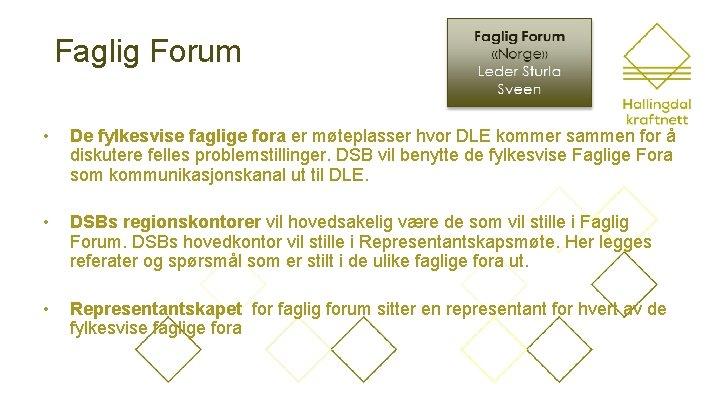Faglig Forum • De fylkesvise faglige fora er møteplasser hvor DLE kommer sammen for