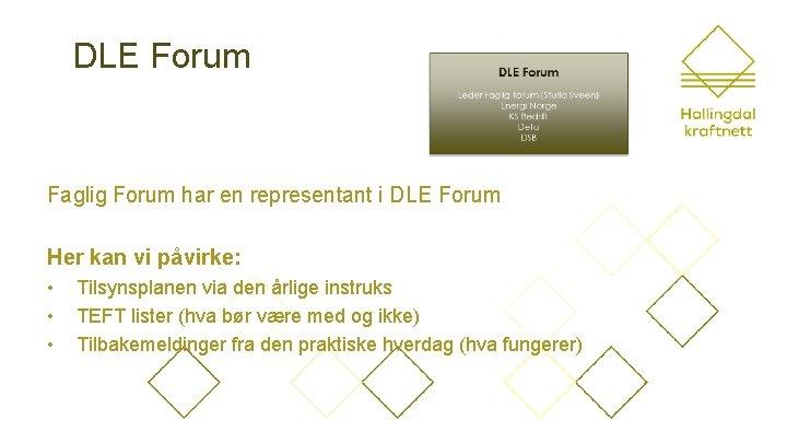 DLE Forum Faglig Forum har en representant i DLE Forum Her kan vi påvirke: