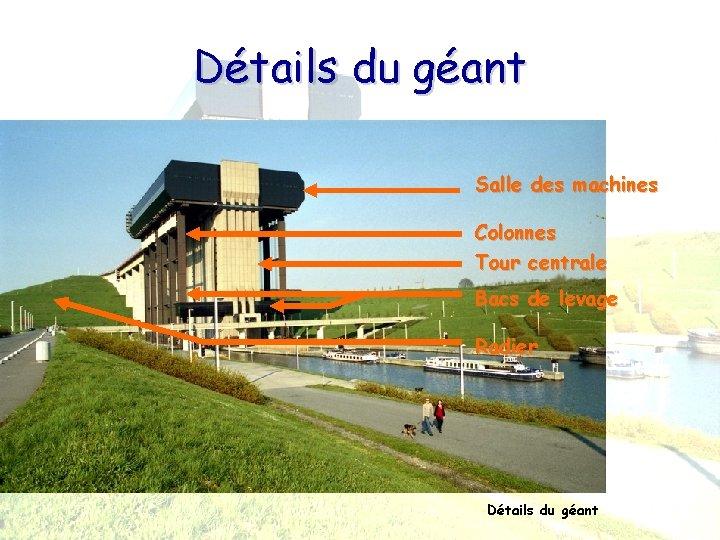 Détails du géant Salle des machines Colonnes Tour centrale Bacs de levage Radier Détails