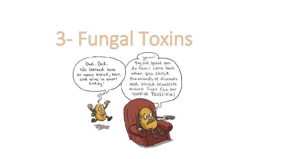 3 - Fungal Toxins