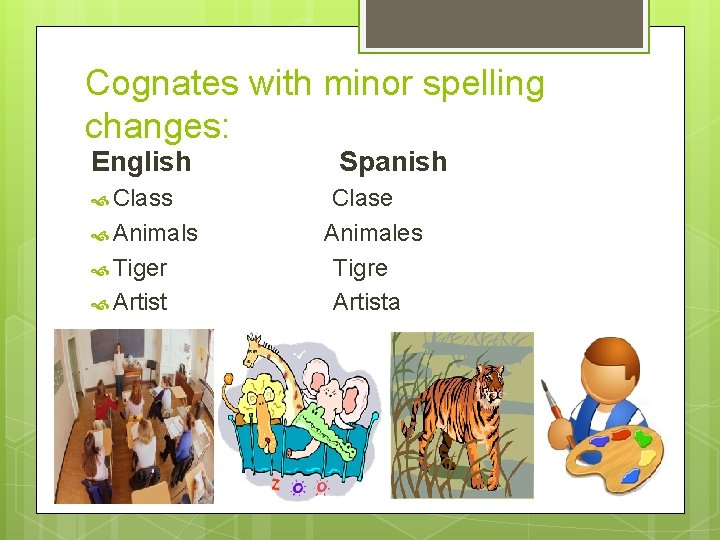 Cognates with minor spelling changes: English Class Animals Tiger Artist Spanish Clase Animales Tigre