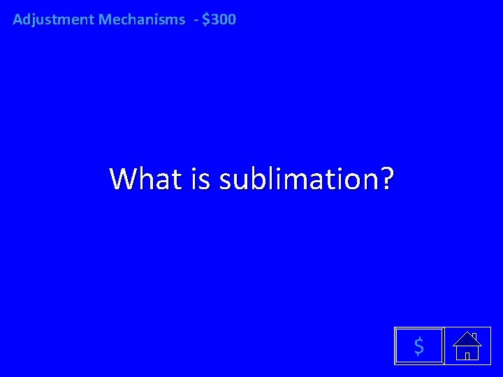 Adjustment Mechanisms - $300 What is sublimation? $