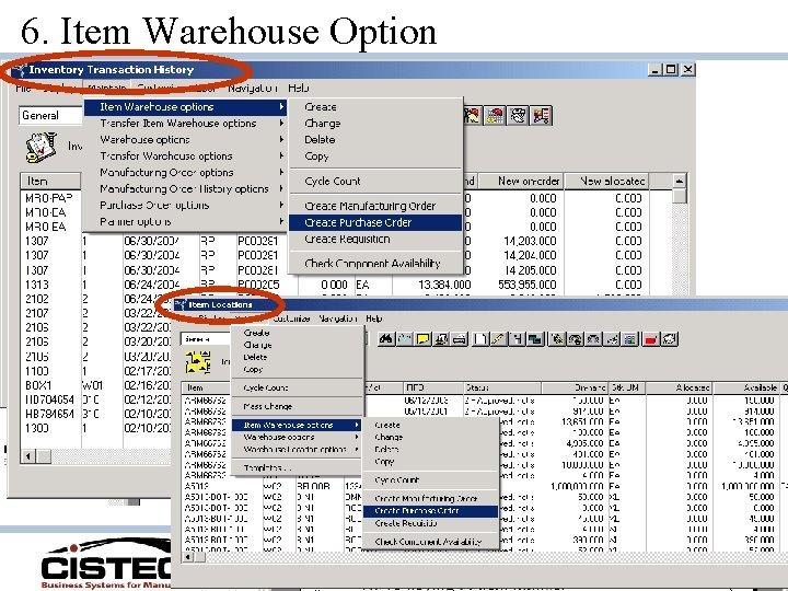 6. Item Warehouse Option