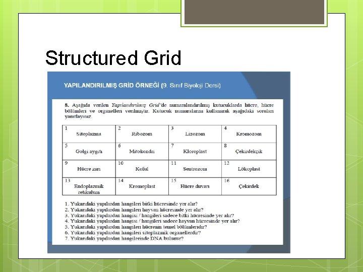 Structured Grid