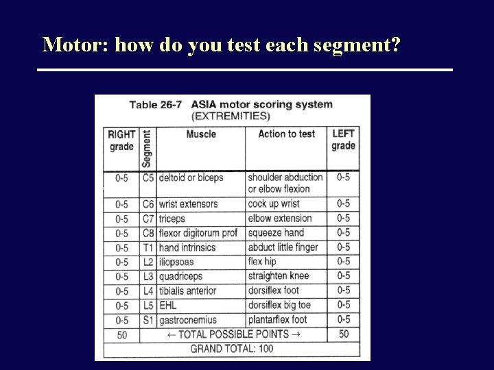 Motor: how do you test each segment?