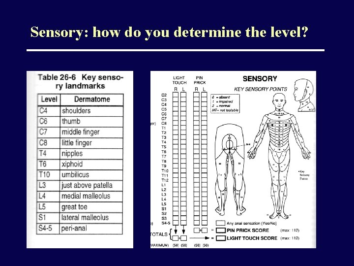 Sensory: how do you determine the level?
