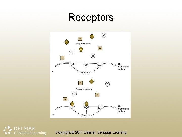 Receptors Copyright © 2011 Delmar, Cengage Learning