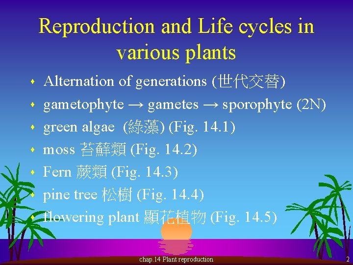 Reproduction and Life cycles in various plants s s s Alternation of generations (世代交替)