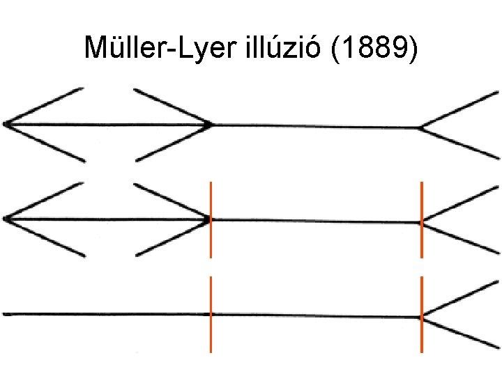 Müller-Lyer illúzió (1889)