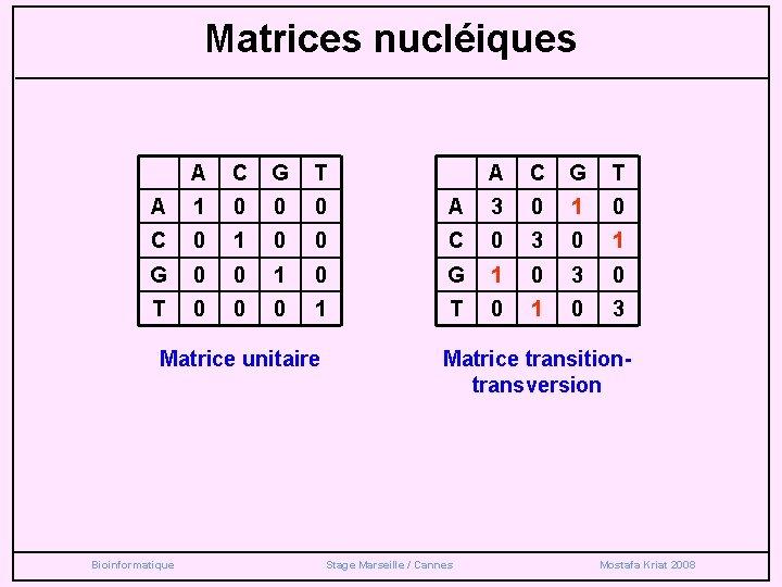 Matrices nucléiques A C G T A 1 0 0 0 A 3 0