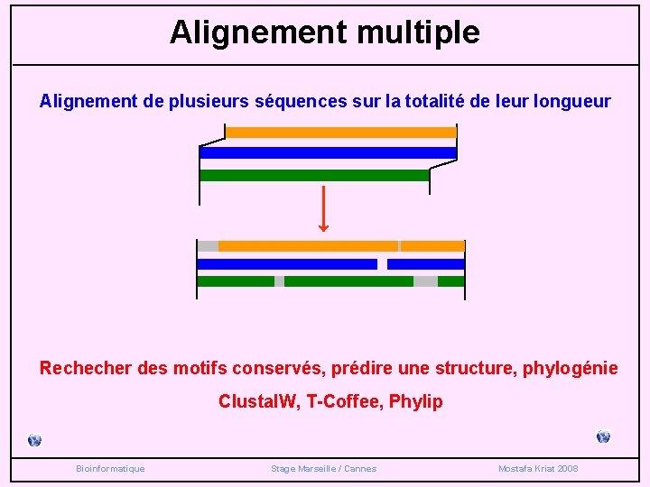 Alignement multiple Alignement de plusieurs séquences sur la totalité de leur longueur Rechecher des