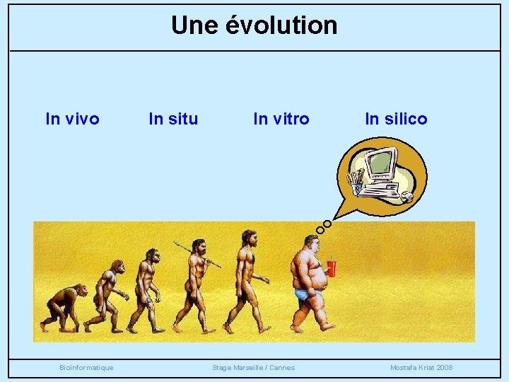 Une évolution In vivo Bioinformatique In situ In vitro Stage Marseille / Cannes In