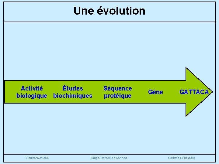 Une évolution Activité Études biologique biochimiques Bioinformatique Séquence protéique Stage Marseille / Cannes Gène