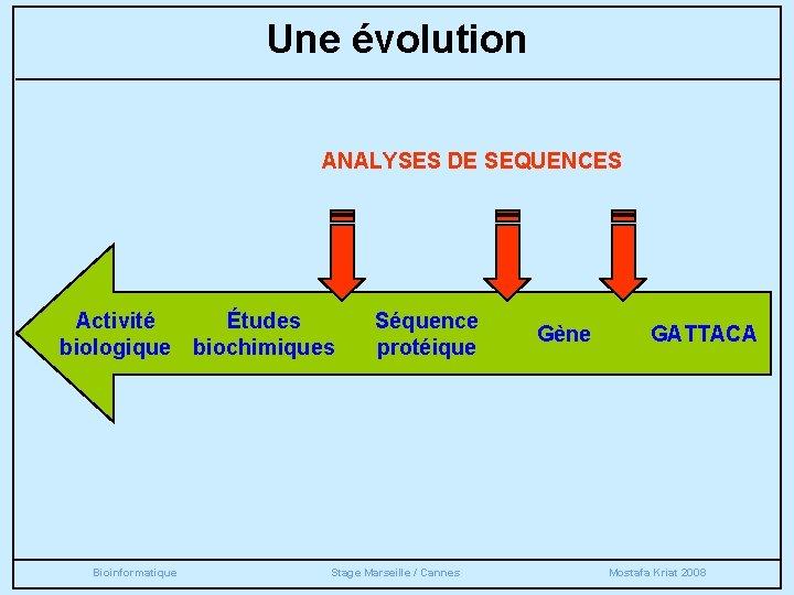 Une évolution ANALYSES DE SEQUENCES Activité Études biologique biochimiques Bioinformatique Séquence protéique Stage Marseille