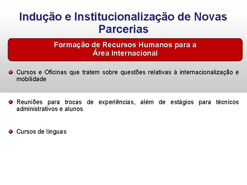 Indução e Institucionalização de Novas Parcerias Formação de Recursos Humanos para a Área Internacional