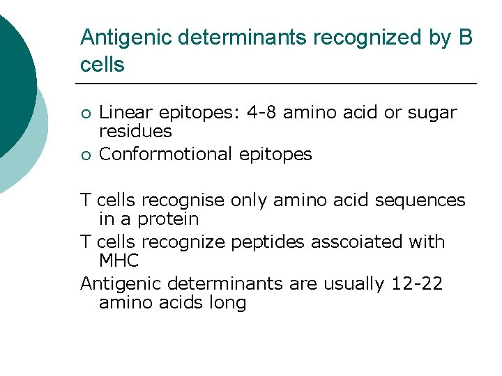 Antigenic determinants recognized by B cells ¡ ¡ Linear epitopes: 4 -8 amino acid