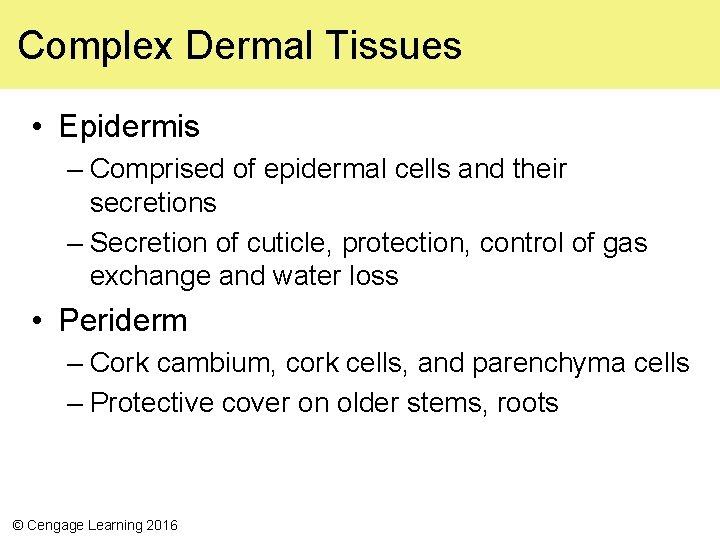 Complex Dermal Tissues • Epidermis – Comprised of epidermal cells and their secretions –