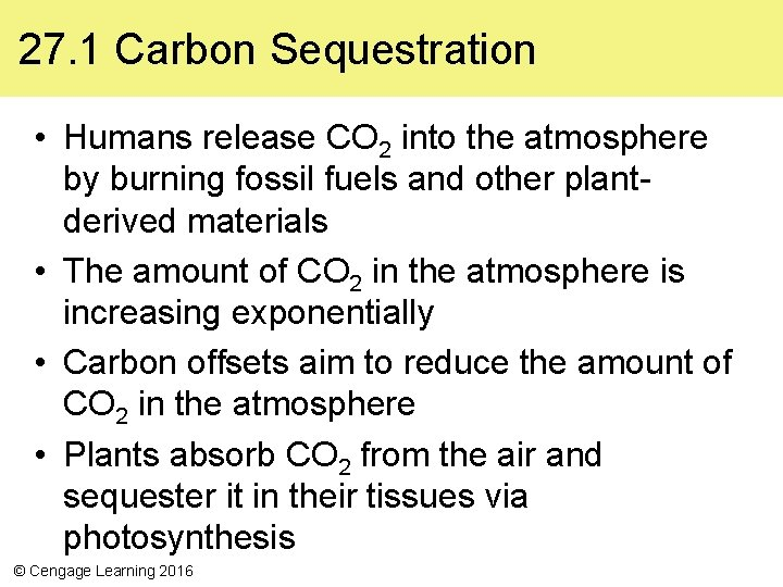 27. 1 Carbon Sequestration • Humans release CO 2 into the atmosphere by burning