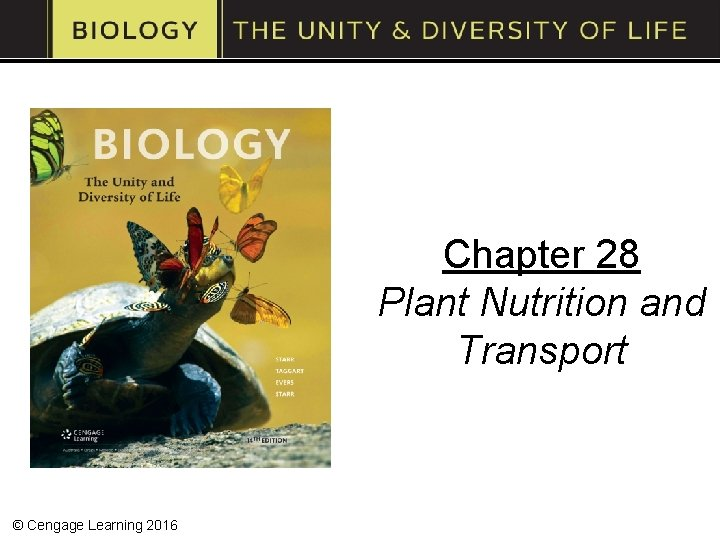 Chapter 28 Plant Nutrition and Transport © Cengage Learning 2016