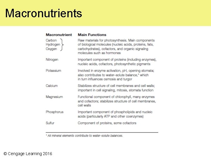 Macronutrients © Cengage Learning 2016