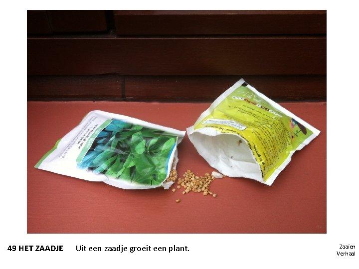 49 HET ZAADJE Uit een zaadje groeit een plant. Zaaien Verhaal
