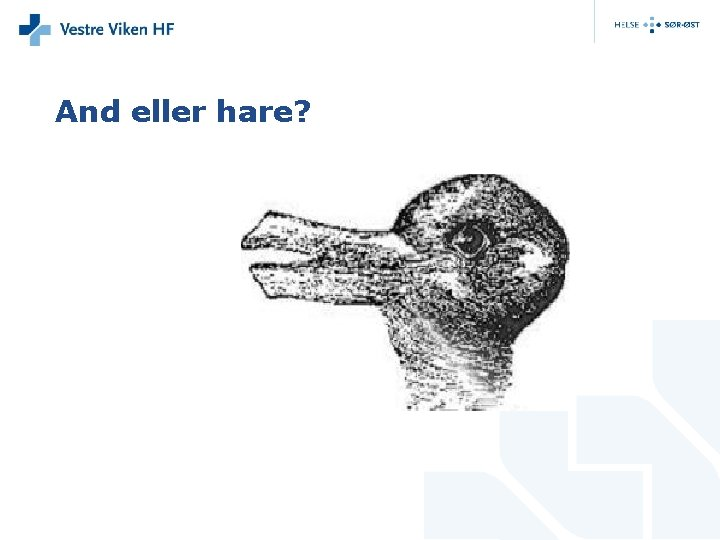 And eller hare?