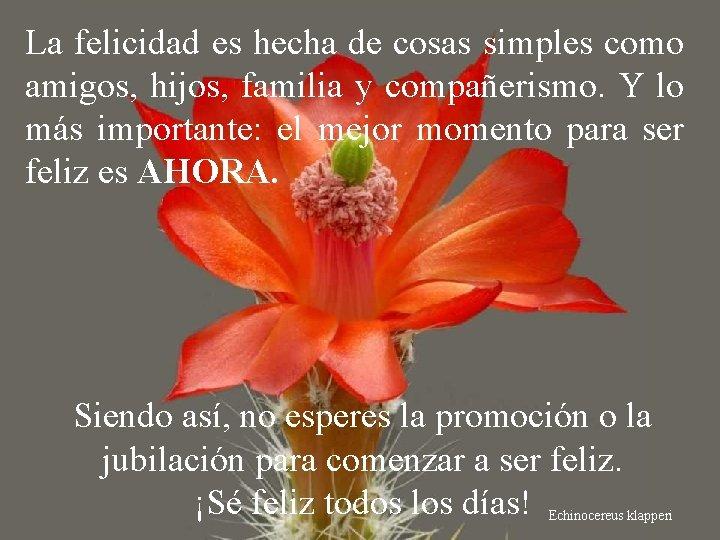 La felicidad es hecha de cosas simples como amigos, hijos, familia y compañerismo. Y