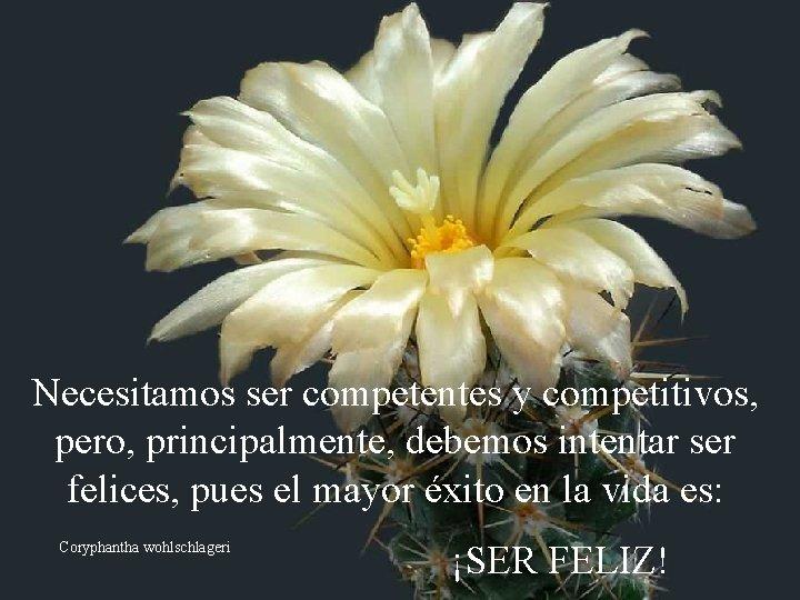 Necesitamos ser competentes y competitivos, pero, principalmente, debemos intentar ser felices, pues el mayor