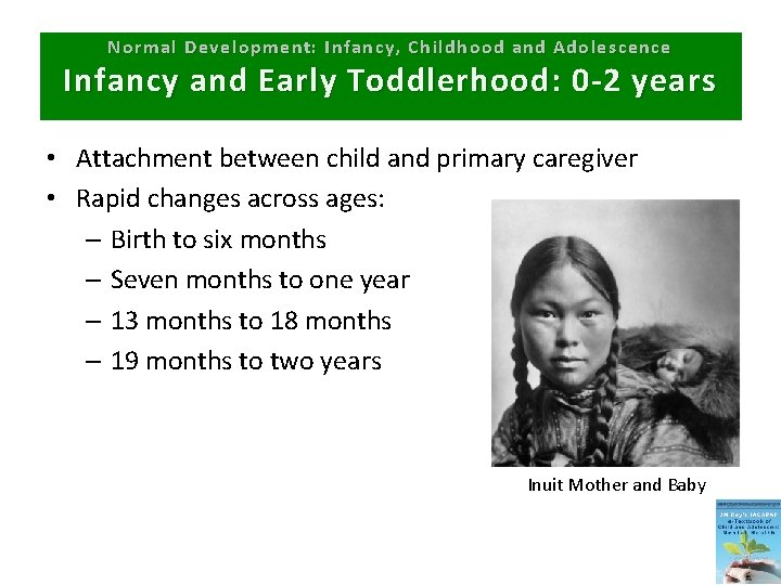 Normal Development: Infancy, Childhood and Adolescence Infancy and Early Toddlerhood: 0 -2 years •