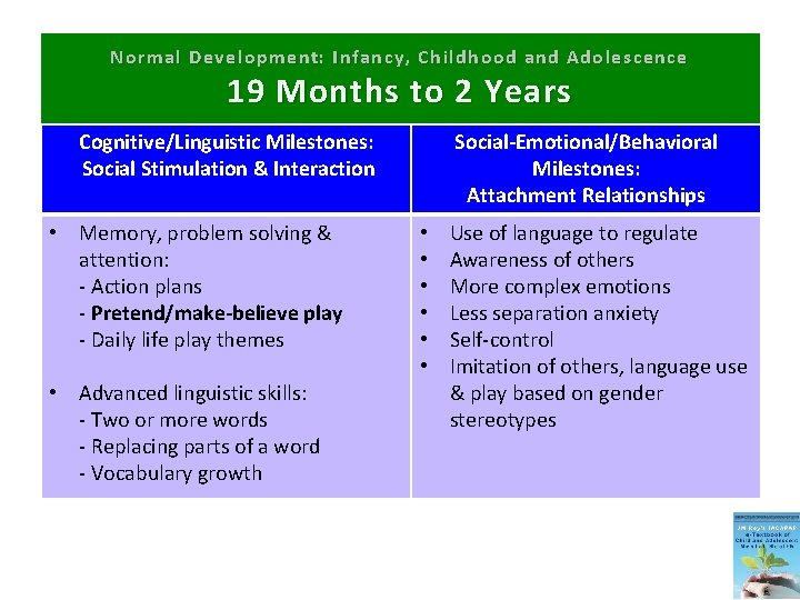 Normal Development: Infancy, Childhood and Adolescence 19 Months to 2 Years Cognitive/Linguistic Milestones: Social