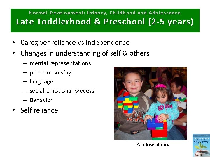 Normal Development: Infancy, Childhood and Adolescence Late Toddlerhood & Preschool (2 -5 years) •