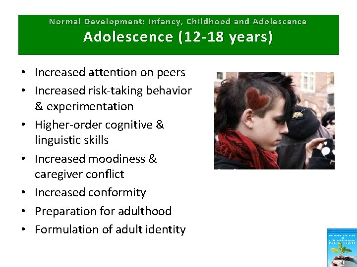 Normal Development: Infancy, Childhood and Adolescence (12 -18 years) • Increased attention on peers