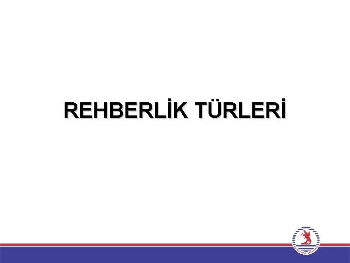 REHBERLİK TÜRLERİ