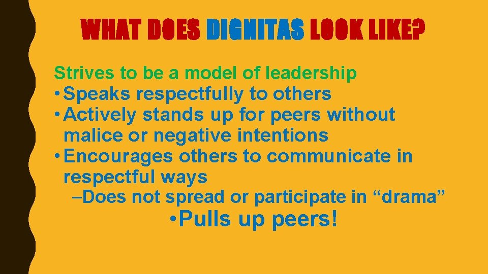WHAT DOES DIGNITAS LOOK LIKE? Strives to be a model of leadership • Speaks