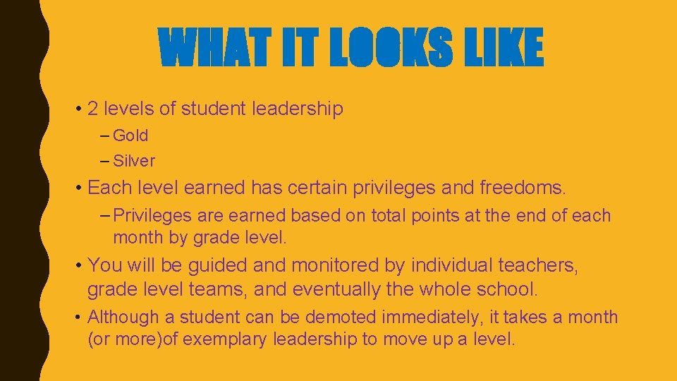 WHAT IT LOOKS LIKE • 2 levels of student leadership – Gold – Silver