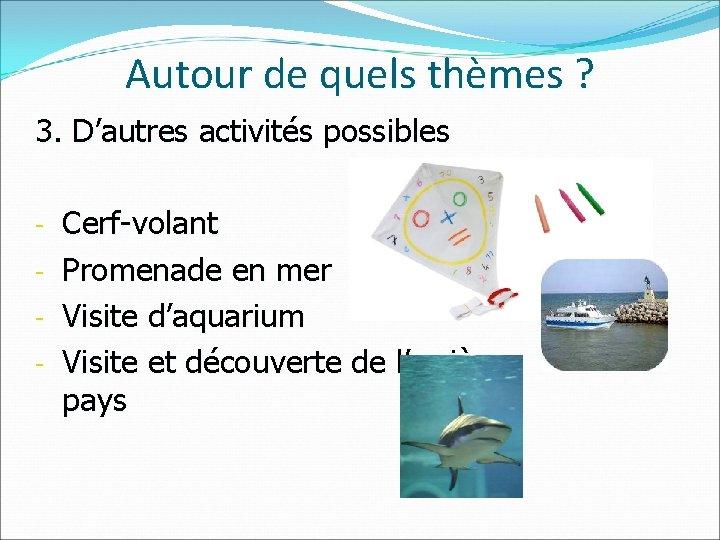 Autour de quels thèmes ? 3. D'autres activités possibles Cerf-volant - Promenade en mer