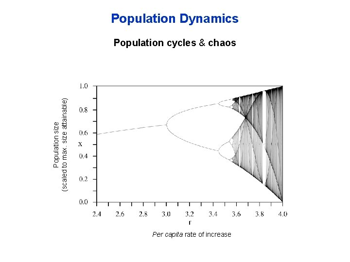 Population Dynamics Population size (scaled to max. size attainable) Population cycles & chaos Per