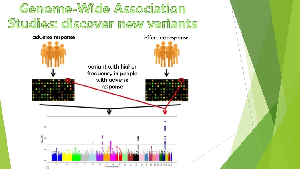 Genome-Wide Association Studies: discover new variants