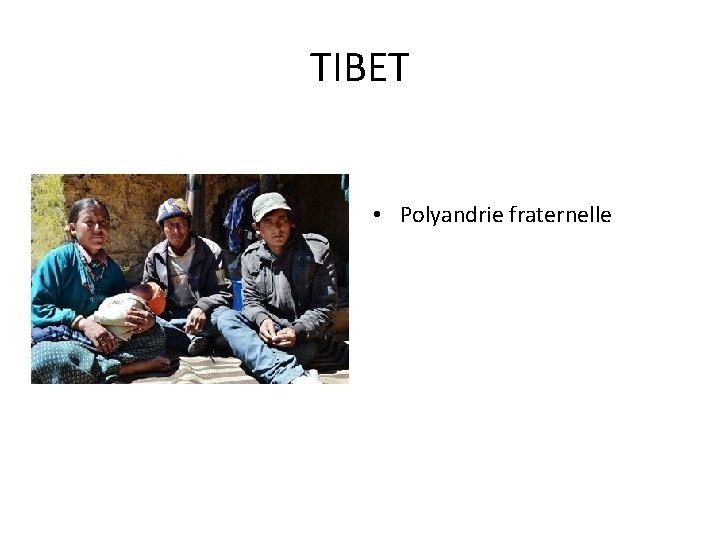TIBET • Polyandrie fraternelle
