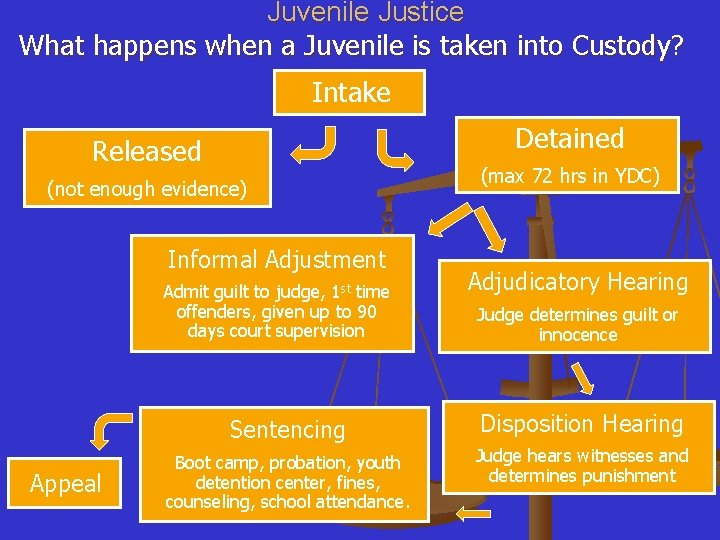 Juvenile Justice What happens when a Juvenile is taken into Custody? Intake Detained Released