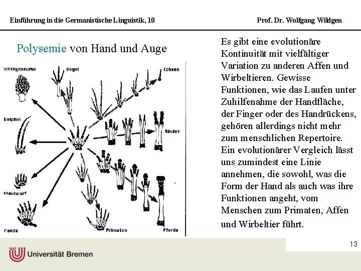 Einführung in die Germanistische Linguistik, 10 Polysemie von Hand und Auge Prof. Dr. Wolfgang