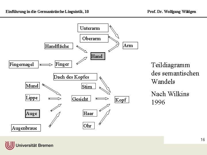 Einführung in die Germanistische Linguistik, 10 Prof. Dr. Wolfgang Wildgen Unterarm Oberarm Arm Handfläche