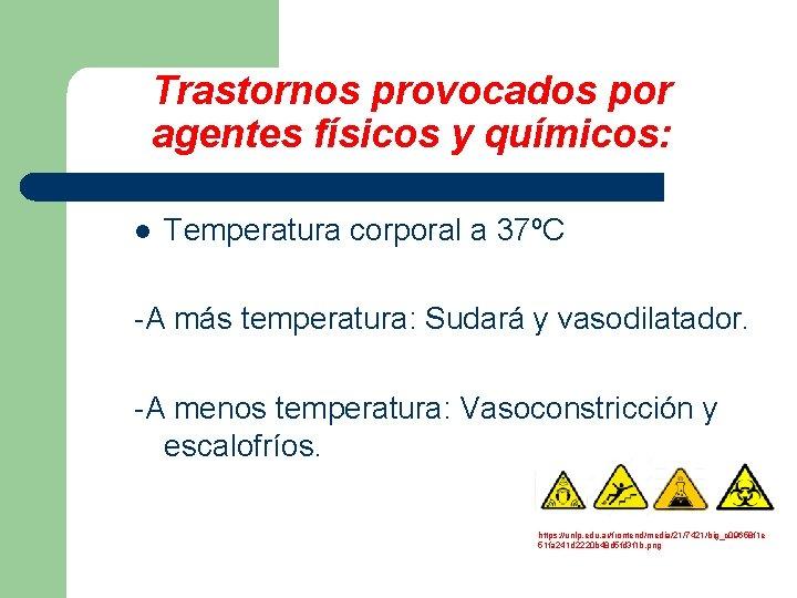 Trastornos provocados por agentes físicos y químicos: l Temperatura corporal a 37ºC -A más