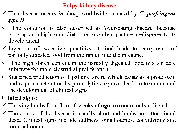 Pulpy kidney disease ü This disease occurs in sheep worldwide , caused by C.