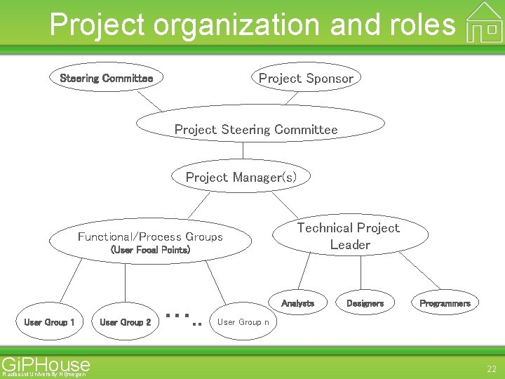 Project organization and roles Project Sponsor Steering Committee Project Manager(s) Functional/Process Groups (User Focal