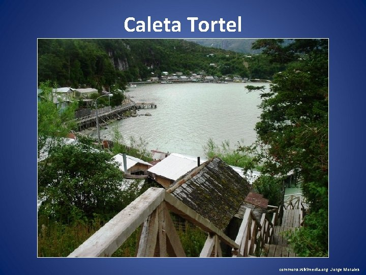 Caleta Tortel commons. wikimedia. org Jorge Morales