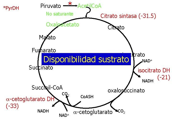*Pyr. DH * Piruvato Acetil. Co. A No saturante Citrato sintasa (-31. 5) Oxaloacetato