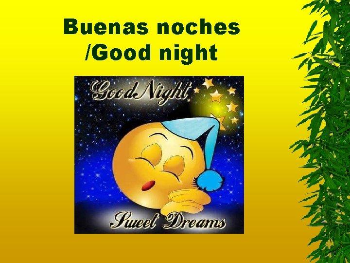 Buenas noches /Good night
