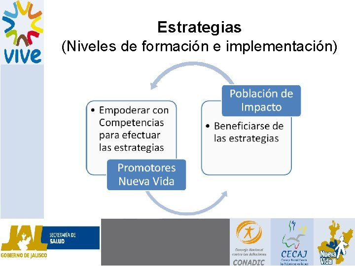 Estrategias (Niveles de formación e implementación)