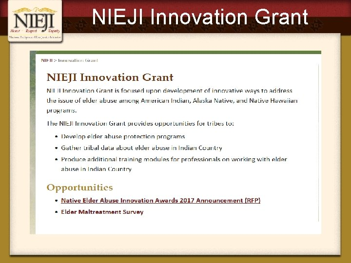 NIEJI Innovation Grant